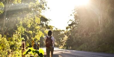 Wat wandelen met je brein doet