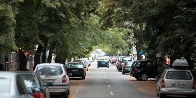 Groenere steden bouwen: negen voordelen van stadsbomen